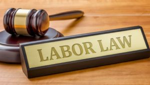 Employment Law: Assisting in the Rebuild of Christchurch